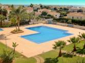 Pool terrace with garden